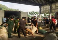 Đà Nẵng: Bắt giữ 10 tấn ngà voi, vẩy tê tê nhập lậu vào Cảng Tiên Sa