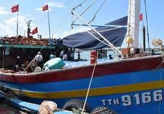 Hồ sơ đăng ký tàu biển Việt Nam