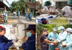 Thực hiện quyết liệt các biện pháp phòng chống dịch bệnh năm 2018
