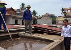Nước mắm Quang Hải và nỗ lực giữ vị truyền thống của quê hương