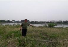 """Hà Nội: Chính quyền """"phân lô, bán nền"""" bất chấp những ảnh hưởng về cảnh quan và môi trường"""