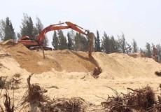 Thủ tướng yêu cầu kiểm tra, Cảnh sát môi trường vào cuộc vụ phá rừng ở Phú Yên