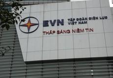 Tập đoàn điện lực Việt Nam được vinh danh doanh nghiệp bền vững