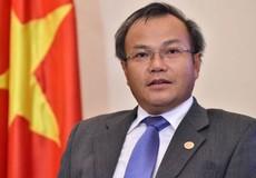 Tiếp tục triển khai toàn diện công tác về người Việt Nam ở nước ngoài