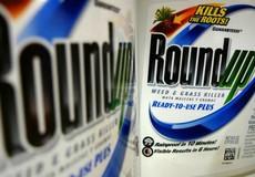 """""""Monsanto cũng phải bồi thường cho các nạn nhân Chất độc Da cam Việt Nam"""""""
