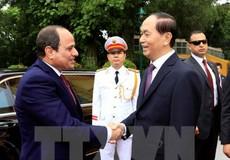 Việt Nam mong muốn thúc đẩy đà phát triển theo hướng thực chất, hiệu quả với Ai Cập