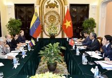 Việt Nam – Venezuela tham khảo chính trị cấp thứ trưởng