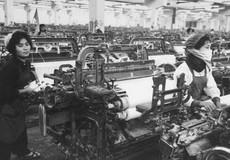 Vàng son một thời: Nhà máy lương công nhân tương đương lương giám đốc