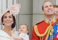 Thái tử Charles từ bỏ kế vị Nữ hoàng Anh, chấp nhận công nương Kate lên ngôi Hoàng hậu