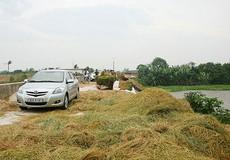 Bình quân 70 hộ dân nông thôn có 1 hộ sở hữu ô tô?