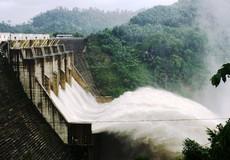 29 dự án thủy điện còn nợ trồng rừng thay thế