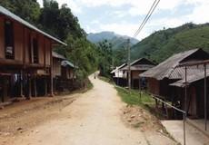 Thanh Hóa được Chính phủ hỗ trợ 50.790 tấn gạo