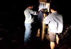 Vượt mưa bão, VNPT giữ liên lạc thông suốt trong bão số 10