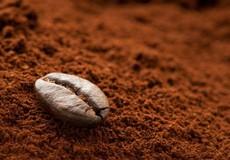 Phân biệt cà phê thật và cà phê từ hóa chất, bắp rang