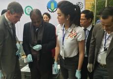 Việt Nam cam kết quyết liệt chống buôn bán động, thực vật hoang dã