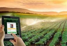 Khởi nghiệp trong nông nghiệp phải là lĩnh vực dẫn đầu
