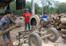 Năm nay, ngành chế biến gỗ gặp nhiều khó khăn?