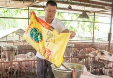 Quỹ đầu tư KKR hoạt động ở Việt Nam ra sao?