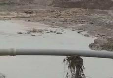Đồng Nai: Một bé trai đuối nước thương tâm