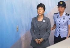 Nhóm luật sư của cựu Tổng thống Hàn Quốc từ chức