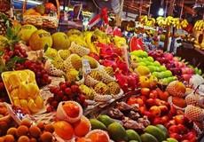 Hà Nội: Gắn biển nhận diện thí điểm cửa hàng kinh doanh trái cây