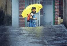 Cô bé 8 tuổi bị tấn công tình dục - nỗi đau ám ảnh của nạn ấu dâm