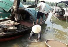 Ngôi làng hơn 3 thế kỷ sống khỏe bằng nghề cào hến