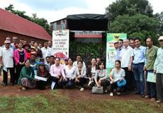 Giúp nông dân nâng cao chất lượng cà phê Buôn Ma Thuột