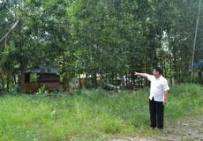 Vụ người dân kêu cứu ở Đồng Nai: Xã nhiều lần chặt phá cây cối và nhổ hoa màu?