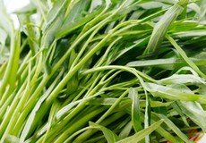 Chia sẻ cách nhận biết rau muống nhiễm chì hay không?