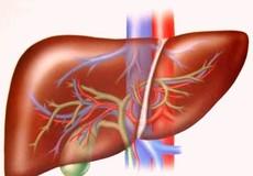 Cảnh báo tổn thương gan do thuốc trị gan mật Ocaliva
