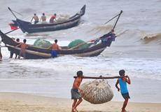 29 khái niệm cần biết liên quan đến hoạt động thủy sản