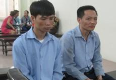 Bán GPLX giả, hai cựu giáo viên dạy lái xe lĩnh án