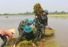 Hình ảnh đẹp về người lính trên quê hương Bác Hồ