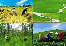 """""""Lỗ hổng"""" trong quản lý đất đai ngày càng bị nới rộng"""