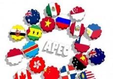 Quan chức cao cấp APEC tìm  biện pháp đảm bảo an sinh thời số hóa