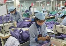 51,3% người lao động có thu nhập vừa đủ trang trải cuộc sống