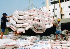 'Cú huých' lớn cho nhiều doanh nghiệp xuất khẩu gạo