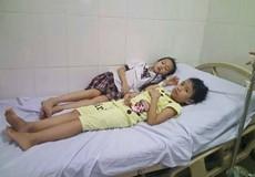 Hà Tĩnh: Ăn quả ngô đồng, 9 học sinh nhập viện cấp cứu