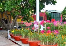 Công viên Đại tướng Võ Nguyên Giáp trên quần đảo Trường Sa