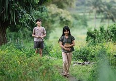 Khán giả nô nức đi xem phim Việt chiếu miễn phí