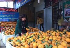 Thương hiệu cam Cao Phong tạo nên giá ổn định cho thị trường