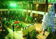 Lung linh lễ thắp sáng cây thông noel tại Furama Resort Đà Nẵng