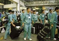 NLĐ Việt Nam ở nước ngoài chưa được TGPL kịp thời