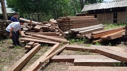Quảng Bình: Phát hiện gỗ lậu giấu trong... trụ sở UBND xã