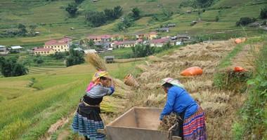 Miễn hay giảm tiền sử dụng đất đối với thôn đặc biệt khó khăn?