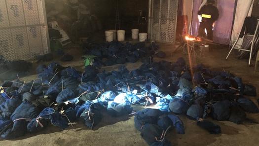 C03 triệt phá đường dây mua bán, vận chuyển động vật hoang dã tại Hà Tĩnh