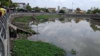 Cần Thơ: Phát hiện thi thể nữ trôi sông