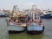 Bình Thuận: Kiên quyết ngăn chặn, xử Lý tàu giã cào bay vi phạm hoạt động đánh bắt hải sản trên vùng biển