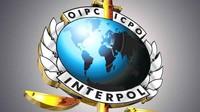 Quyền lực của Interpol